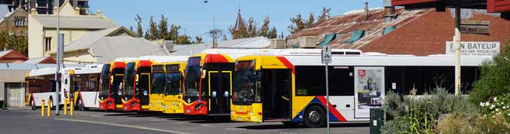 Adelaide Metro buses on city layover