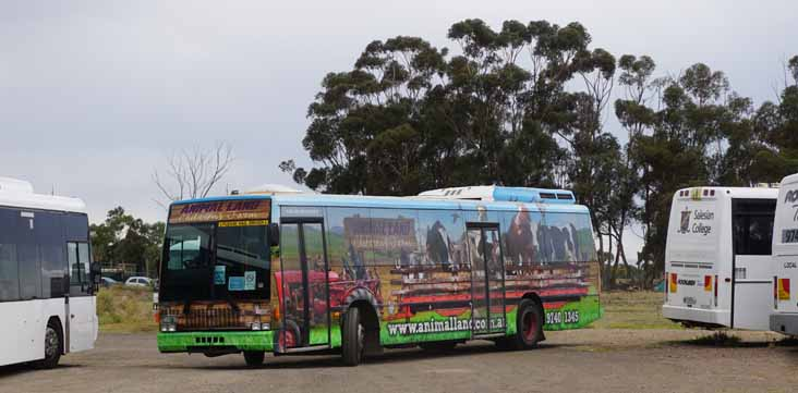 Rockleigh Tours Volvo B10M Austral Metroliner BS02DX