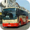 Brighton & Hove Coaches