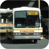 Forster Bus Service