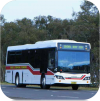 Port Stephens Coaches