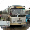 Preserved buses & trams