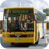 Surfside Buslines in Yellow livery