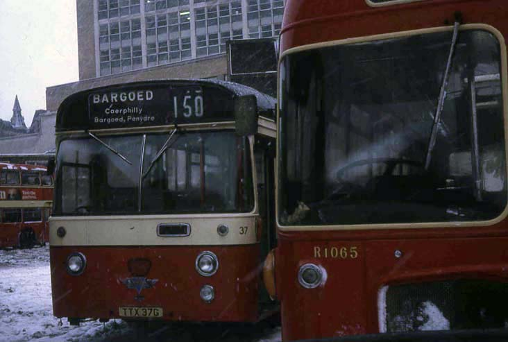 Gelligaer AEC Swift Willowbrook 37 & Red & White RESL R1065