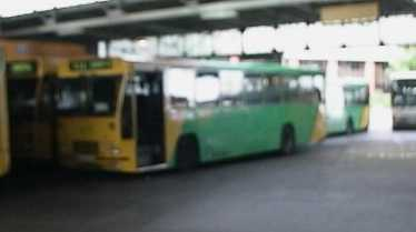 Badgerline Volvo/Alexander P