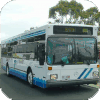 Bunbury City Transit